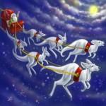 半そでのサンタクロース?オーストラリアのクリスマスは一味違う。