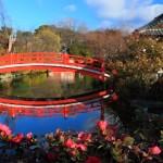 世界の美しい橋と世界に負けない日本の美しい橋